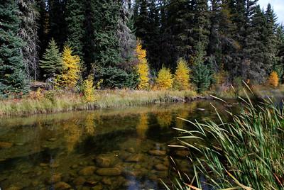 FF-Reflective Waskesiu River-Helen Brown
