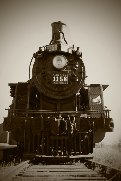 BW-Iron Horse #1158-Helen Brown