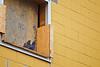 TR-Neighbourhood Watch-Bruce Guenter