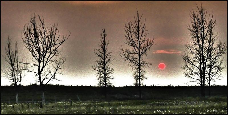 AB-Smokey Sunset-Betty Calvert