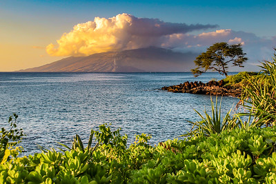 SC-Island Beauty-Bob Holtsman