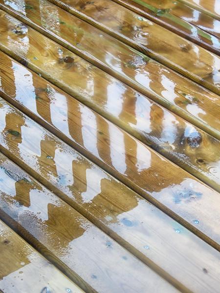 TR-Golden Pond-Philip McNeill