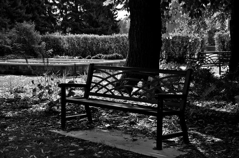 BW-Solitude-Anita Simpkins