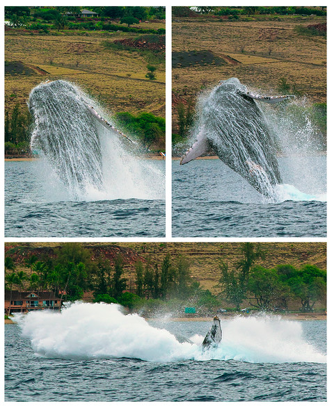1Print-TR-Splashdown!-Brian Yurkowski