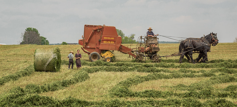 TR-Ol' Time Harvest-Reg Coulter