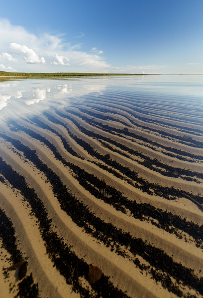 Ripples in sand. Pasfield Lake, northern Saskatchewan