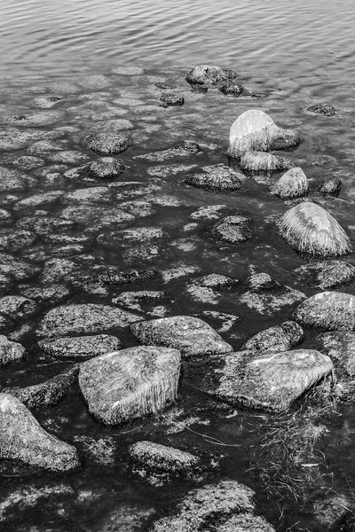 1Print-BW-Off The Rocks-Rhea Preete