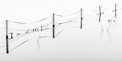 1Print-MN-Fencelines-Michael Murchison