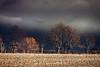 SC-Dark clouds fill the sky-Amanda Sutherland