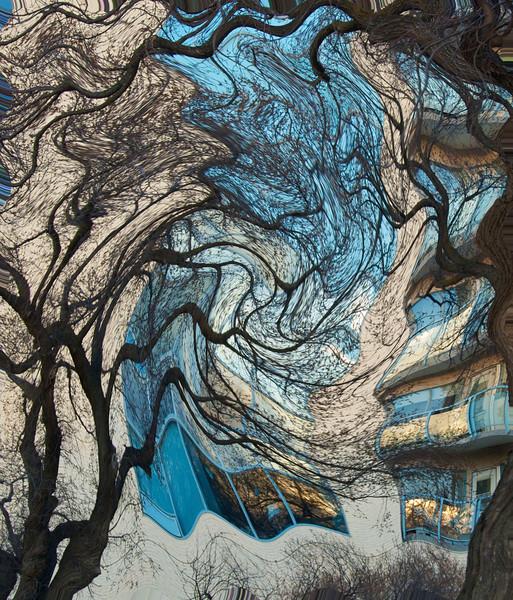 AR-Web Of Nutana-Emily Schindel