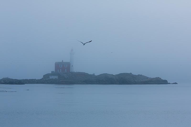 1Print-SC-Foggy Sanctuary-Rae McLeod