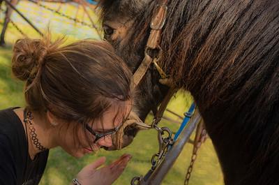 TR-Horse Whisper-Emily Schindel