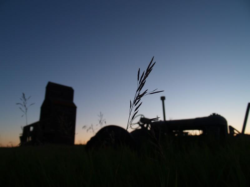 TR-Hallmarks of the Prairies-Judy Salloum