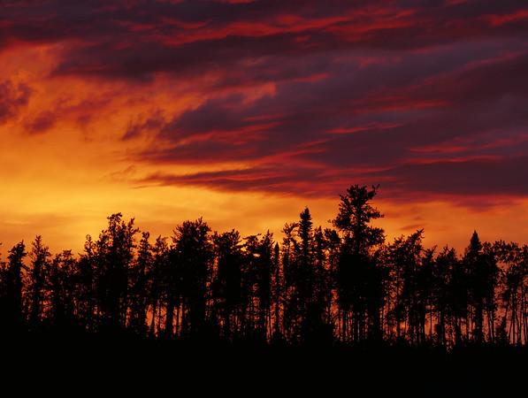 TR-Fire in the Sky-Larry Nagy