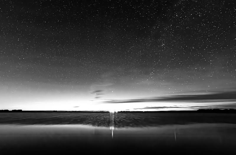 Dark Skies Bright Lights-Tammy Vallee