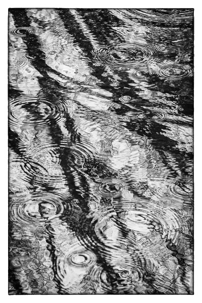 Puddle Play-Hans Holtkamp