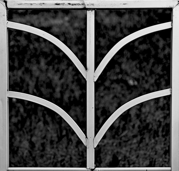 Steel Wings-Bruce Guenter