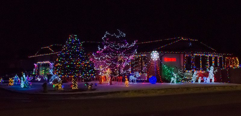 2-TR-Light Up Christmas-Michele Kralkay