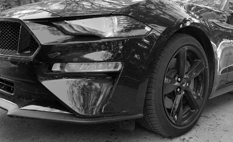 Mustang-Gordon Sukut