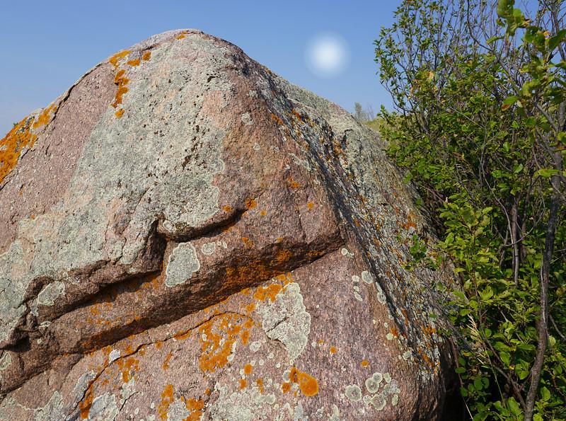The Elders Speak Of A Time Millions Of Moons Ago-Gordon Sukut