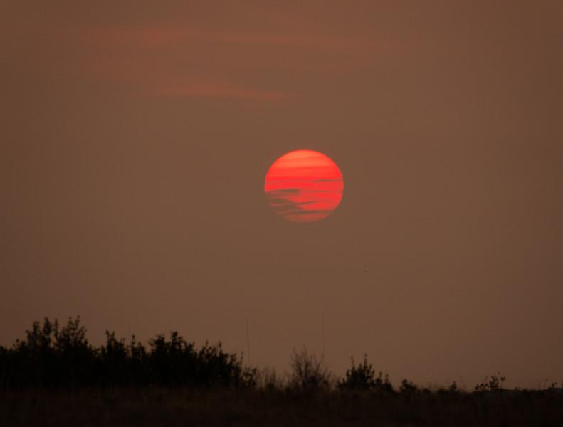 Burning Sun-Richard Kerbes