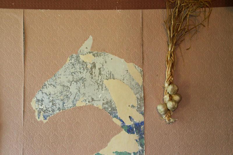 Torn Wallpaper Horse Image As Shot-Gayvin Franson