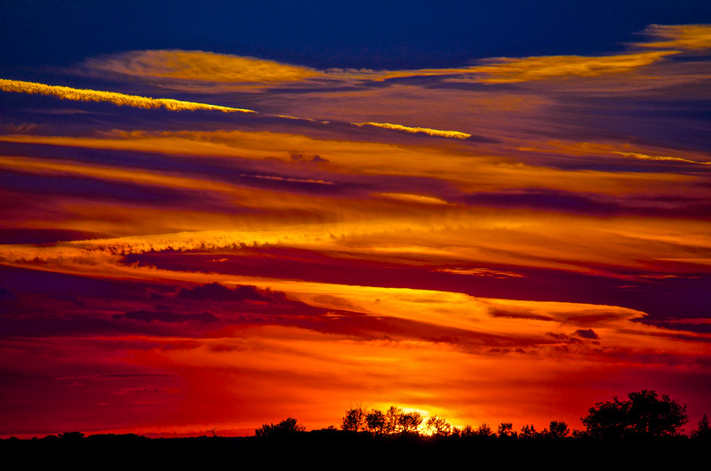 Saskatchewan Serengeti Sunset