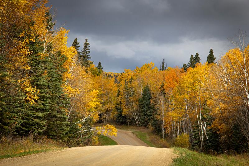 2-Journey Into Autumn-June McDonald
