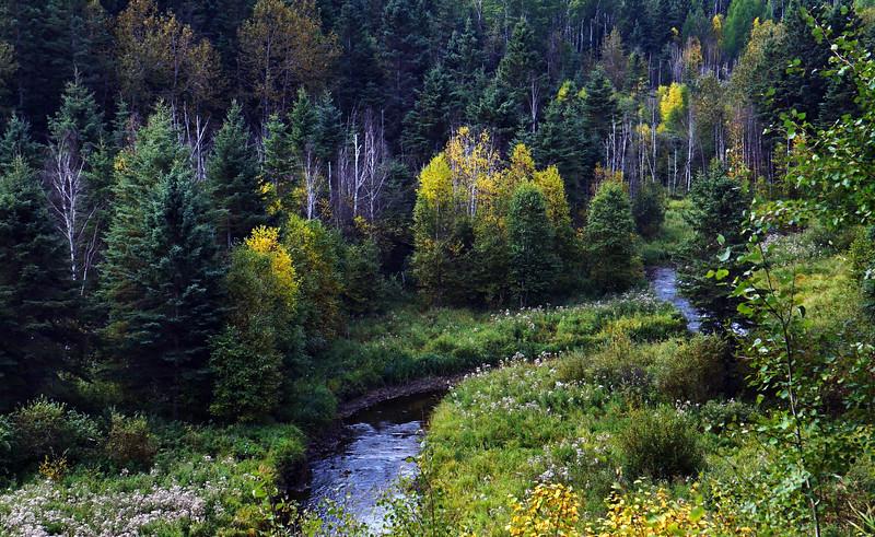 2-Ness Creek-Gordon Sukut