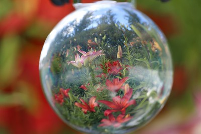2-Bubble View-Tracy Stupak