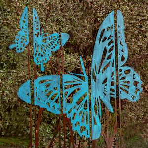 4-Blue Butterfly-Emily Schindel