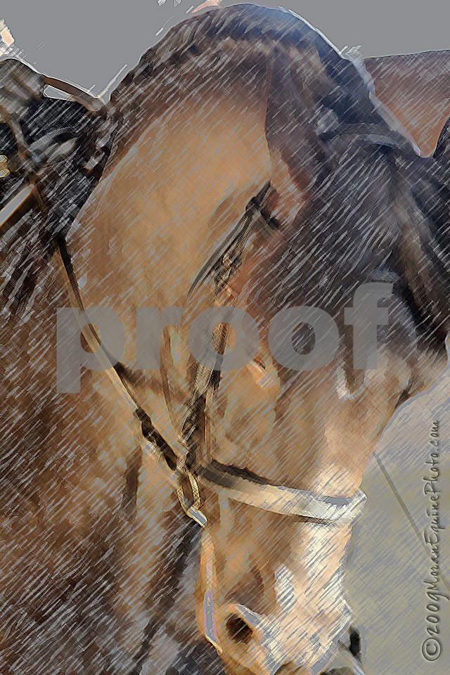 mep0630krclinic-ef2.jpg.  Artistic effect added.
