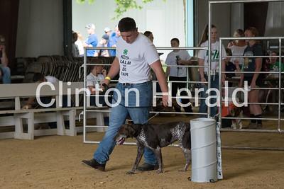 Clinton County Fair dog show 7-12-17
