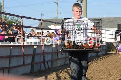 Clinton County Fair parade of champions 7-15-17