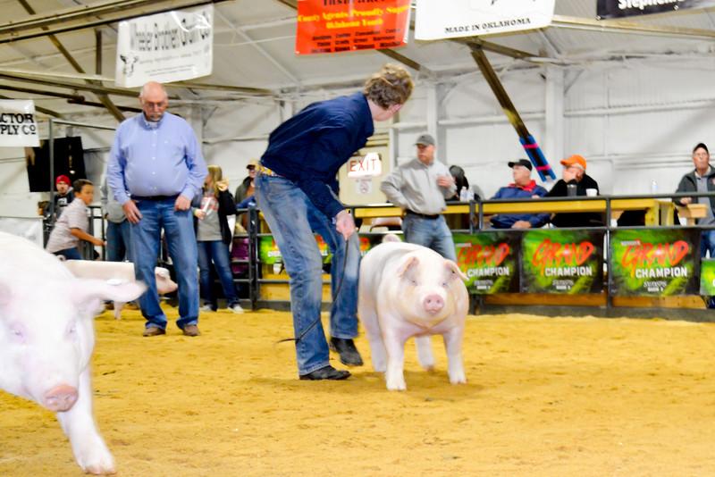 2020014_clinton_swine-14