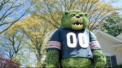 "PNC Bears Visa ""Green Envy"""
