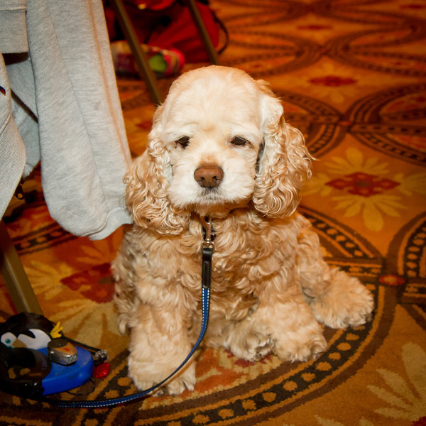 Sam at NCCA Convention.