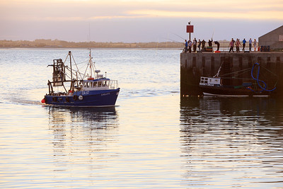 Coming Home, Port Oriel, Clogherhead -IMG_1938
