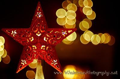 20111226_ChristmasEve_3037