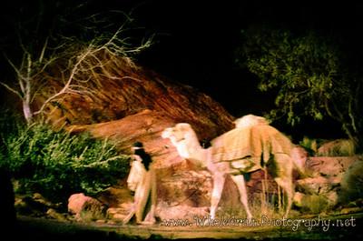 20111223_ChristmasTuacahn_0047
