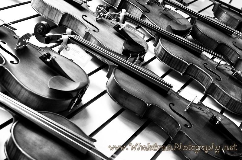 20120218_MusicStrings_1008