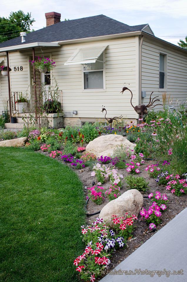 20120712_Garden_0026