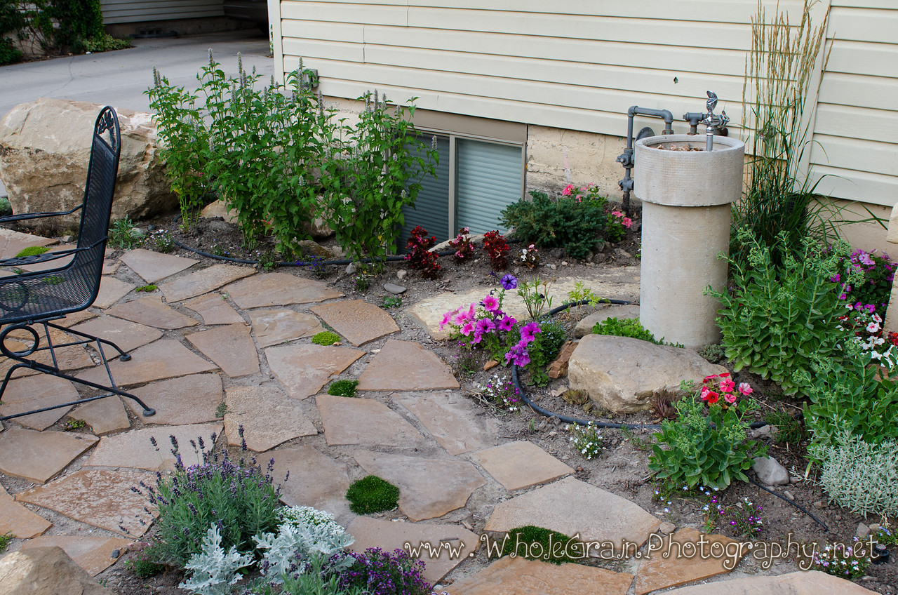20120712_Garden_0051