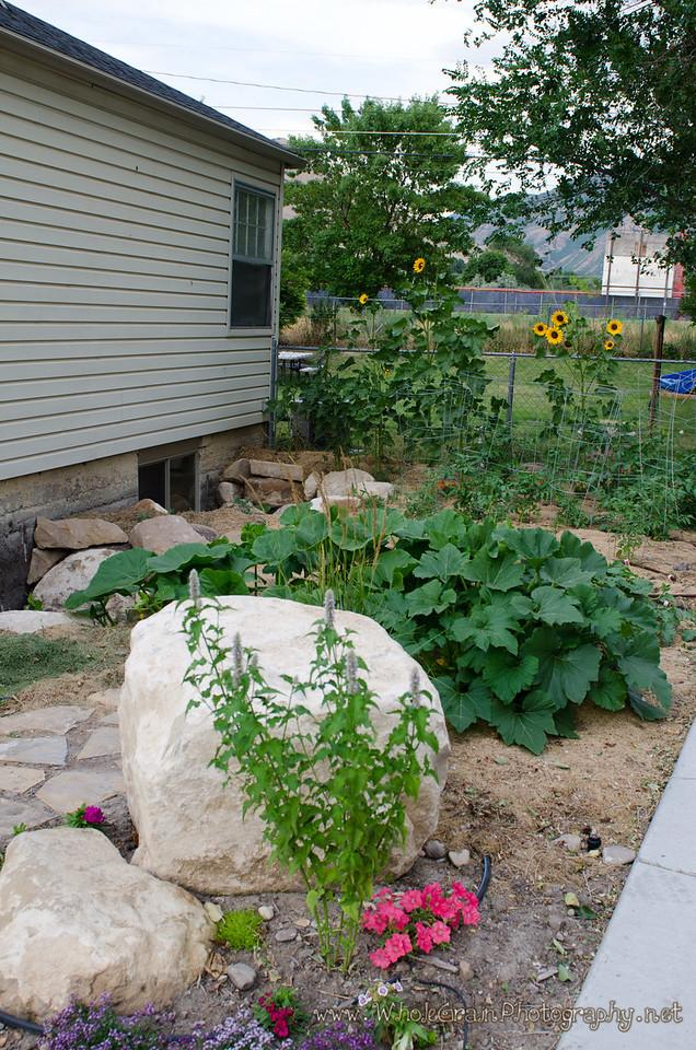20120712_Garden_0034