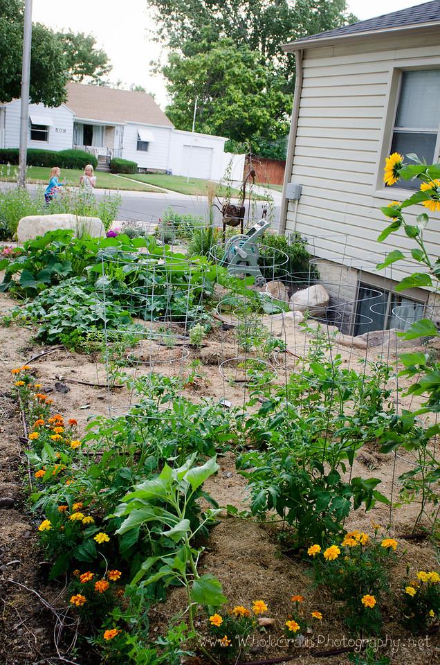 20120712_Garden_0031