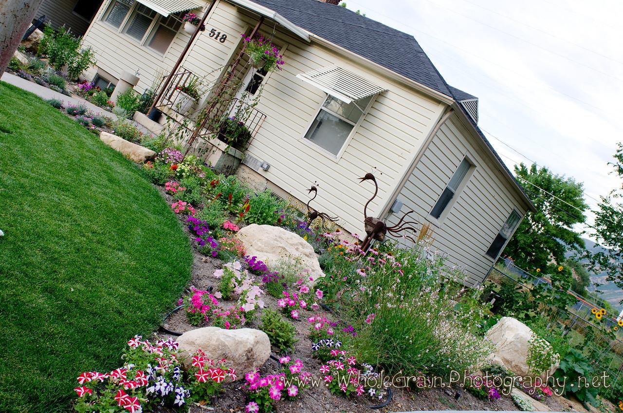 20120712_Garden_0028
