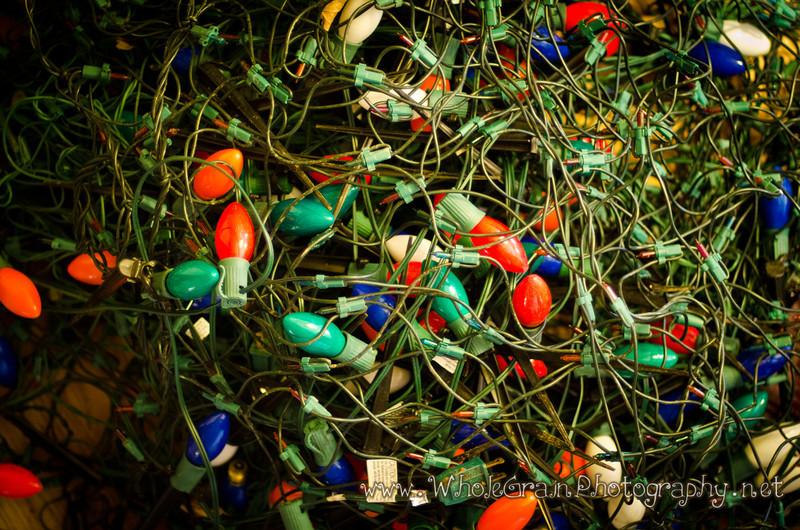 20120116_Christmas_0018