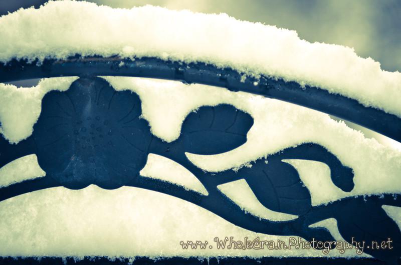 20120107_WinterSnow_0013
