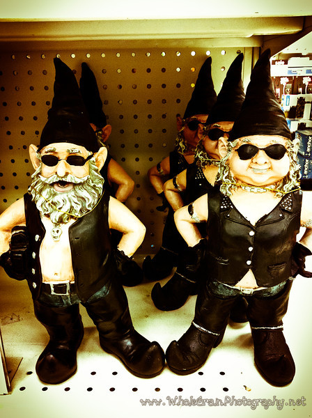 20120124_Gnomes_0002