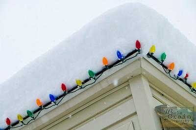 20101221_Winter_0428